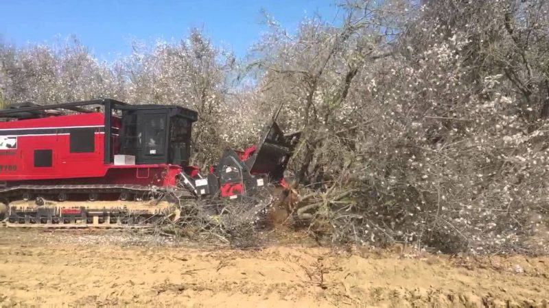 orchard clearing machine
